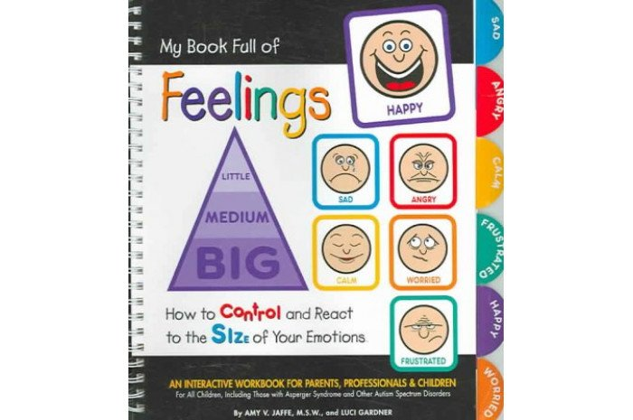 My Book Full of Feelings: How to Control And React to the Size of Your Emotions Interactive Workbook