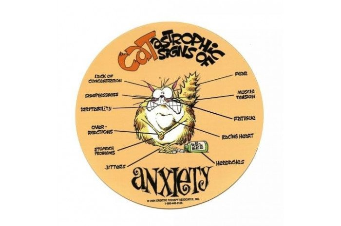 Cat-astrophic Signs of Anxiety Magnet