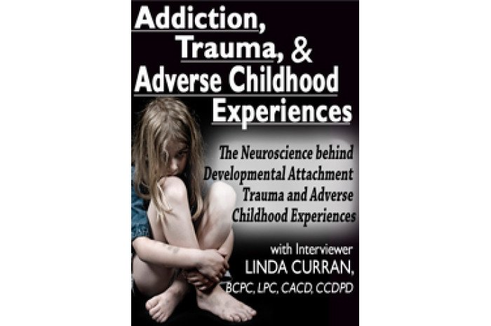 Addiction, Trauma, & Adverse Childhood Experiences (ACEs) DVD