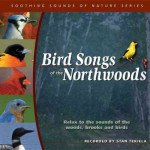 Soothing Sounds of Nature: Bird Songs of the Northwoods