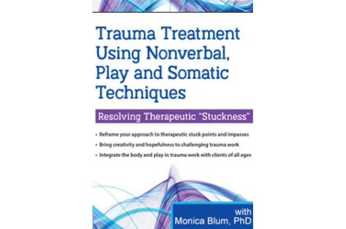 Trauma Treatment: Using Nonverbal, Play and Somatic Techniques DVD