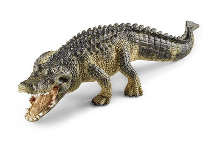 Alligator with Hinged Jaw