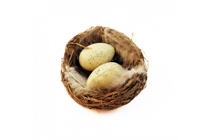 Nest with Eggs (1 piece set)