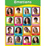 Children's Emotions Poster