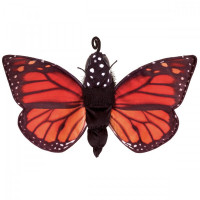 Life Cycle of a Butterfly Reversible Puppet
