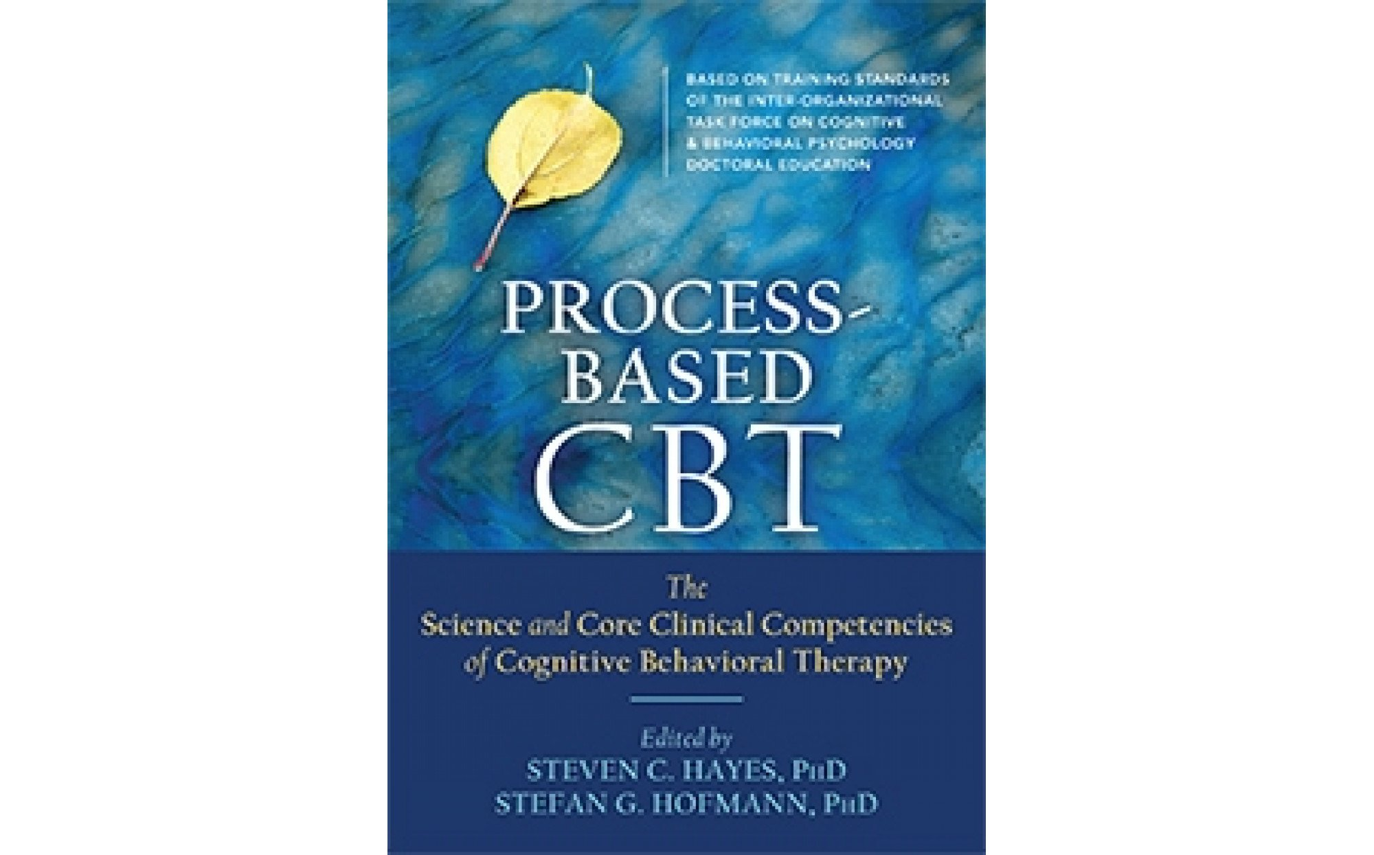 clinical competencies specific to family based therapies Therapy practice and reviews numerous evidence-based family therapy treatments the chapters are organized by presenting problem and include: conduct disorders, substance abuse, childhood behavioral and emotional problems, alcohol abuse.