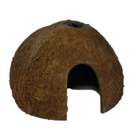 Coconut Cave