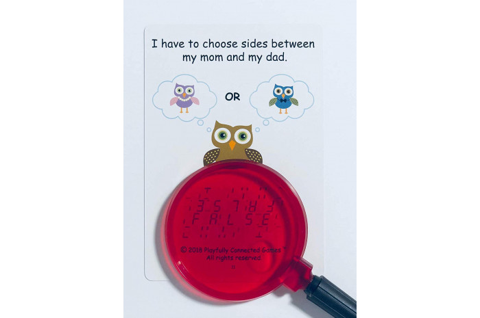 Owl Pal Divorce (English and Spanish Cards)
