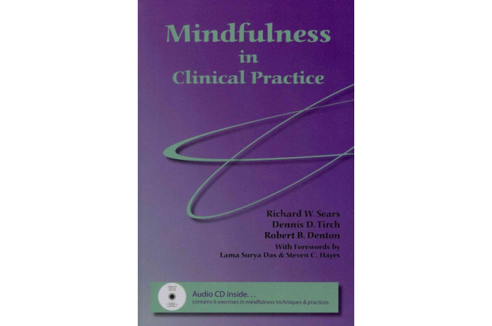 Mindfulness in Clinical Practice with Audio CD