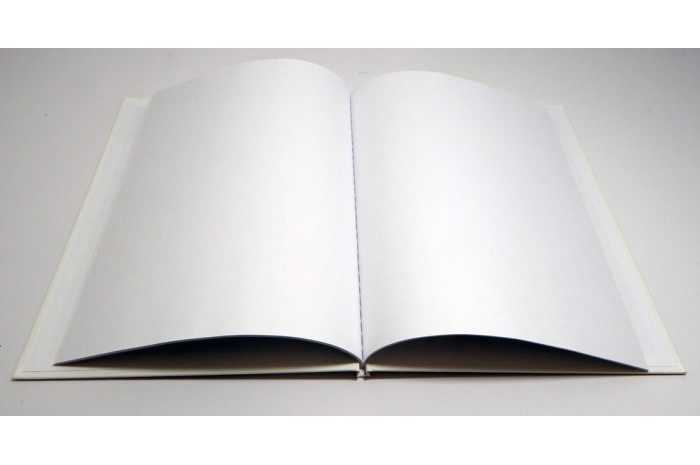 Hardcover Blank Book - Large