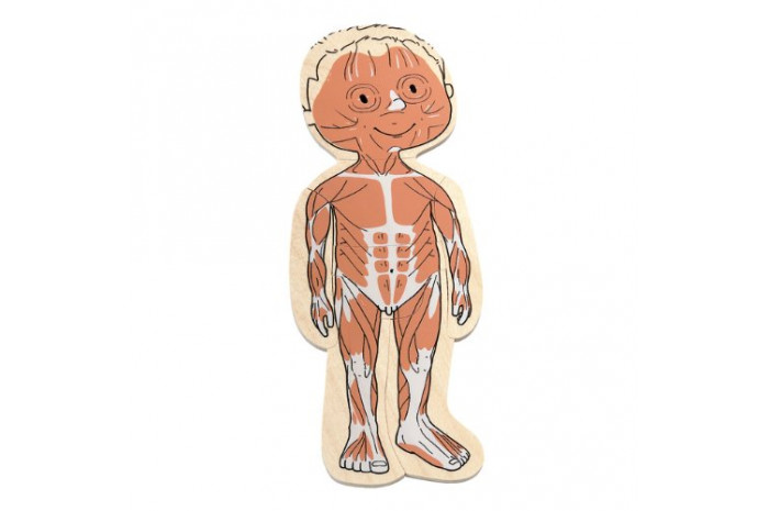 Your Body: 5 Layer Boy Puzzle
