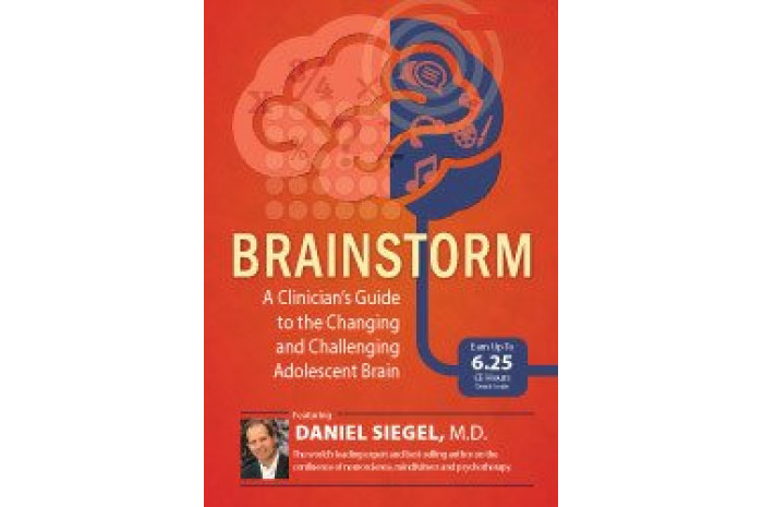 Brainstorm DVD: A Clinician's Guide to the Changing and Challenging Adolescent Brain